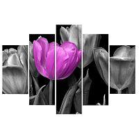 TEMPO KONDELA Obraz, s motívom, 100x70 TYP B, F003592F